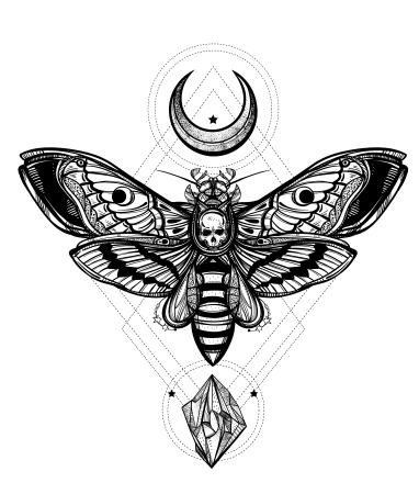 Moth Set-05
