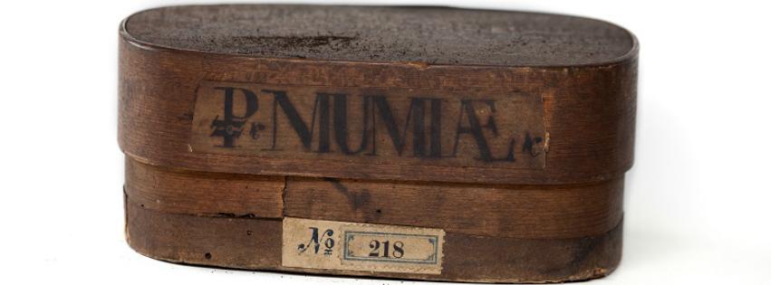 mummypowderbanner