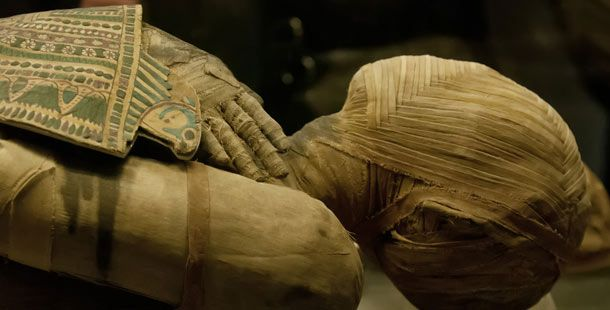 8993395_25-intriguing-facts-about-mummies-that-might_2e91c6fc_m