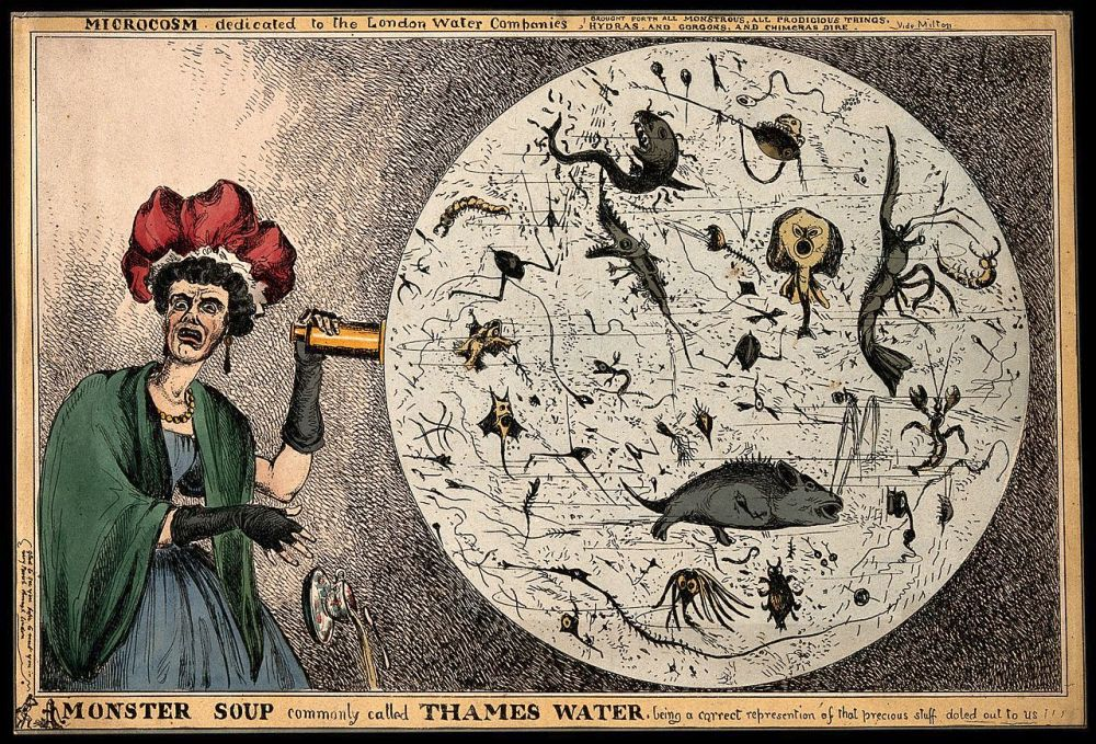 Monster_Soup_commonly_called_Thames_Water._Wellcome_V0011218.jpg